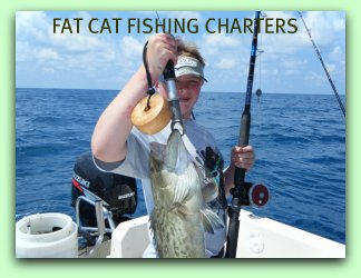 Fishing for Gag Grouper in Tampa Bay