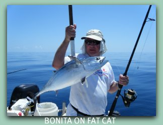 Catching Bonita on the Fat Cat what a day.