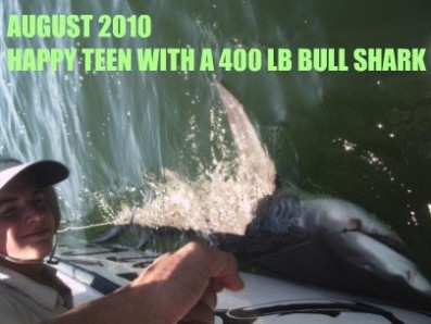 Tampa bay fishing charters catching BULL SHARK FISHING ON FAT CAT FISHING CHARTERS