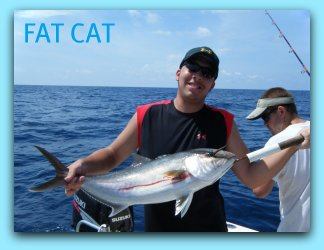 Amberjack fishing in the gulf of Mexico with Capt Brad Masters